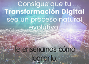 WinLead - Servicios de Transformación Digital