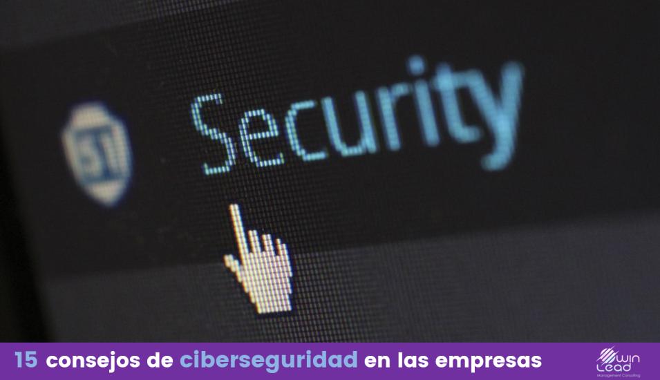 Winlead ciberseguridad