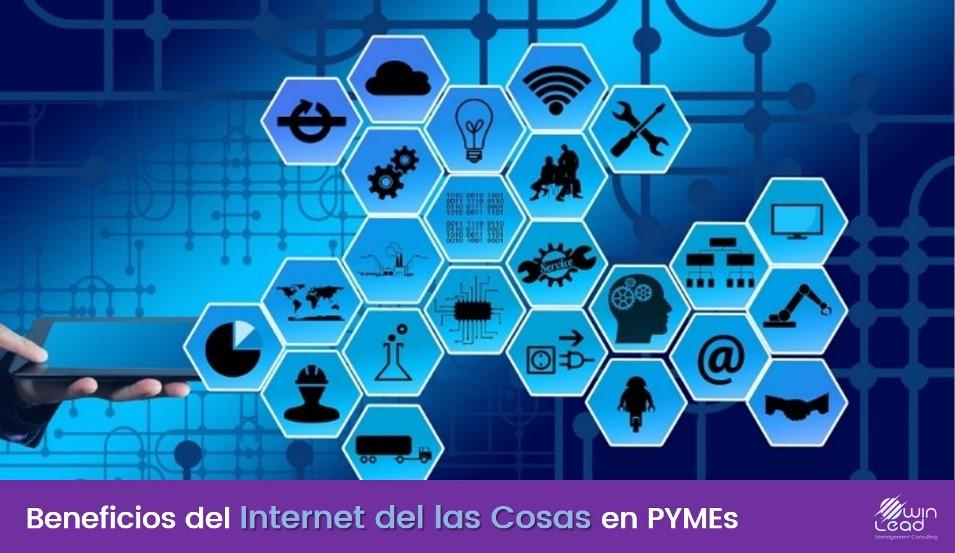 winlead internet de las cosas pymes