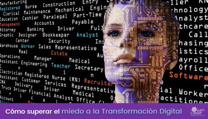 winlead miedo a la transformacion digital